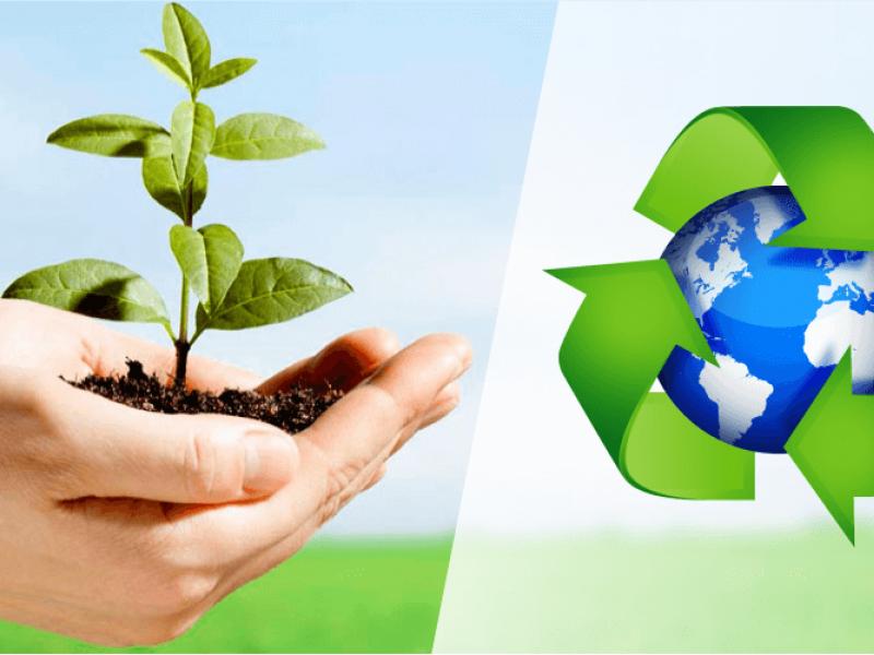 Projeto de lei cria Delegacia Eletrônica de Proteção ao Meio Ambiente