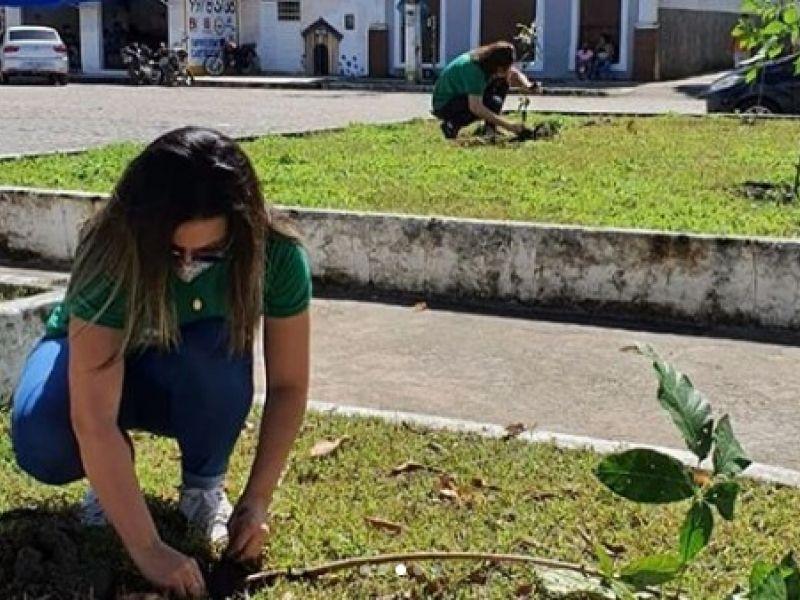 Praças e terrenos de Penedo recebem plantio de 280 mudas de diversas espécies