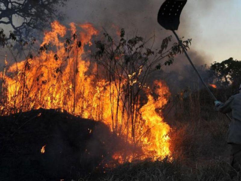 Incêndios atingem várias áreas, entre elas Corumbá e Ladário