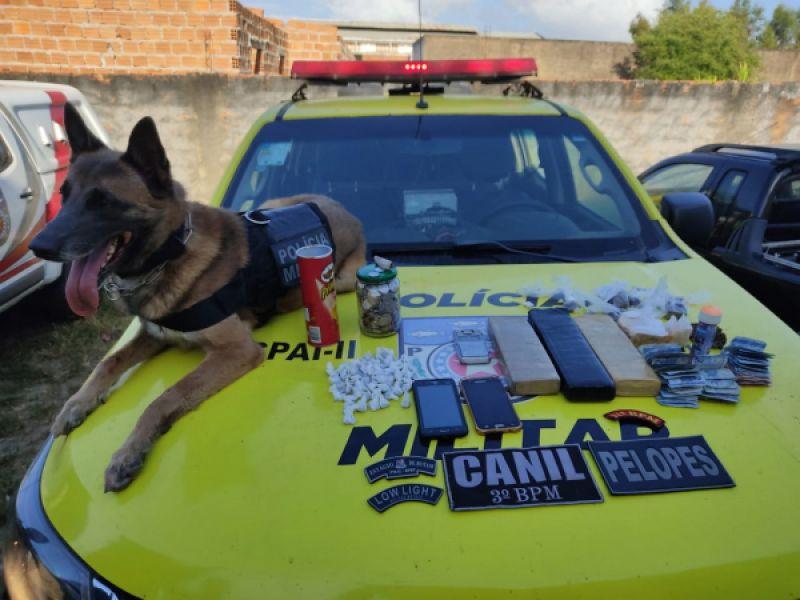 Espingarda e drogas são apreendidas durante operação em Piaçabuçu e Feliz Deserto