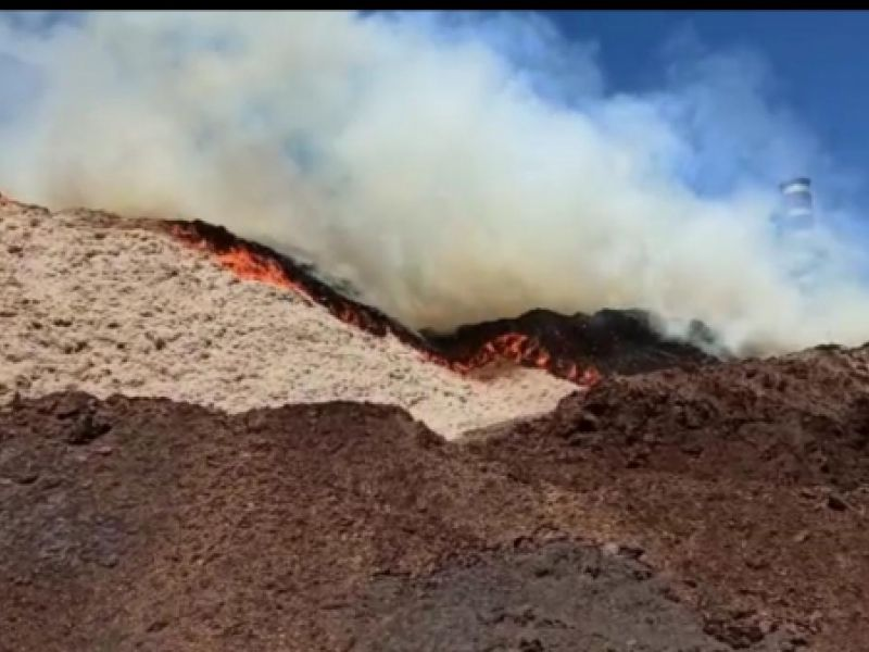 Incêndio de grandes proporções é registrado em amontoado de bagaço de cana, em Coruripe
