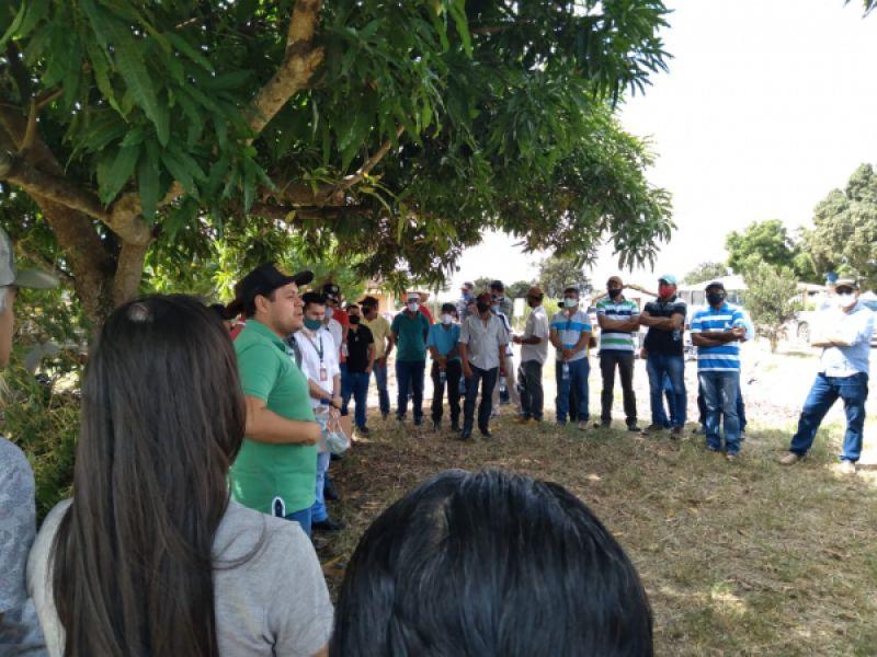 Produtores de leite participam de dia de campo sobre melhoramento genético em Penedo