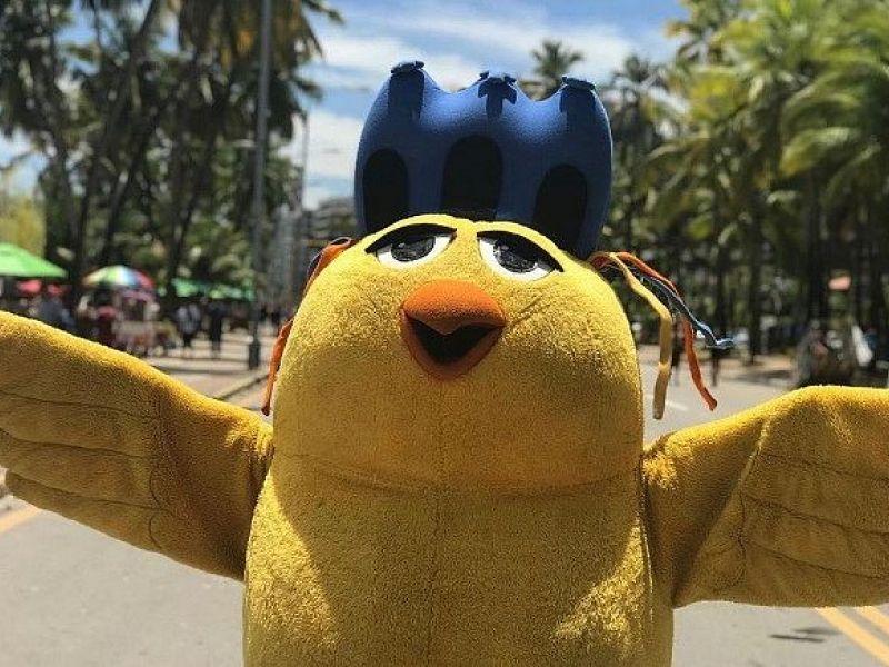 Pinto da Madrugada não desfilará, mas garante programação para período carnavalesco