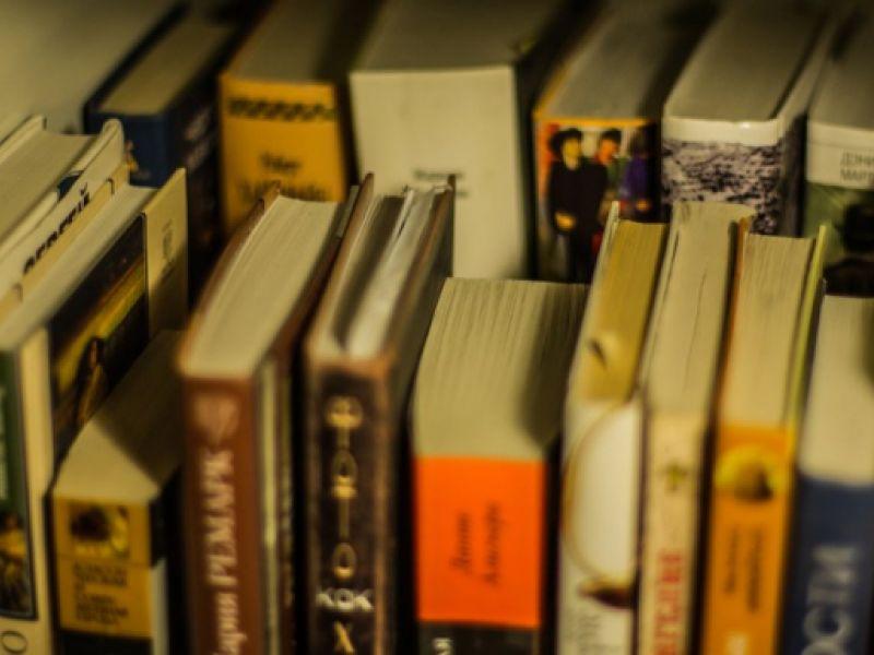 Mais de 132 milhões de livros didáticos devem chegar a escolas públicas até fevereiro
