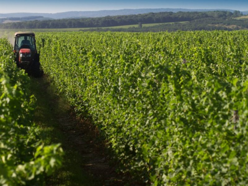 Contratação do crédito rural chega a R$ 169 bilhões em nove meses