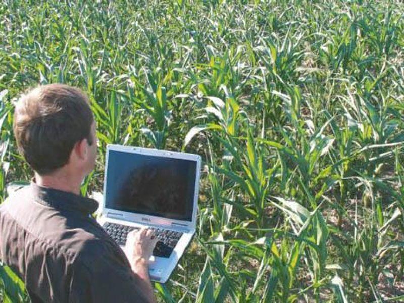 Associação lança edital para contratação de técnico agrícola em Coruripe e região