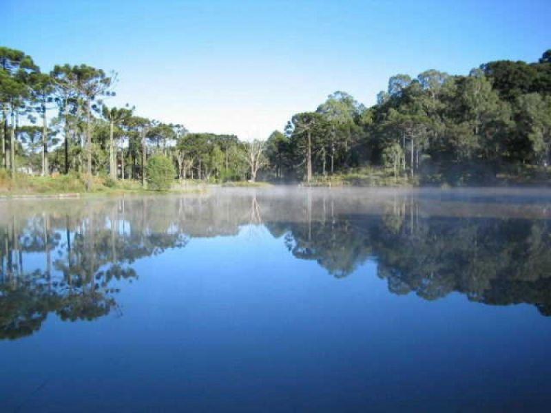 Lançado o edital de concessão da Floresta Nacional de Canela