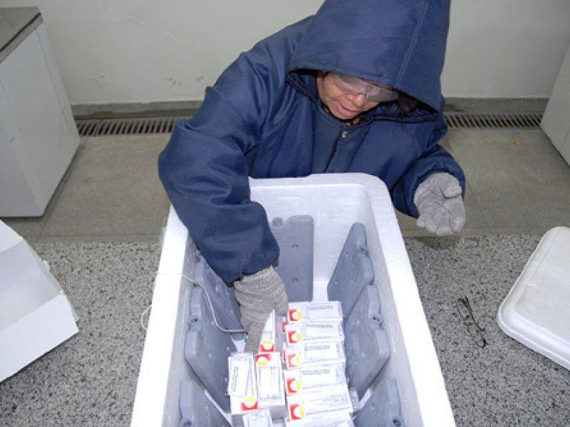 Estado inicia distribuição de vacinas contra gripe A
